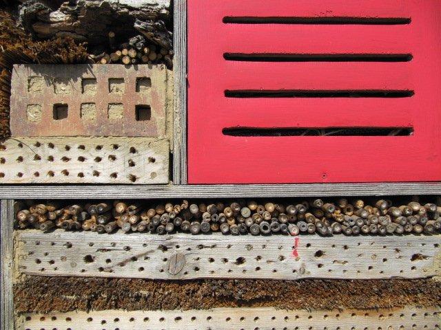 hôtel à insectes Ecole Du Breuil image Paul-Robert TAKACS