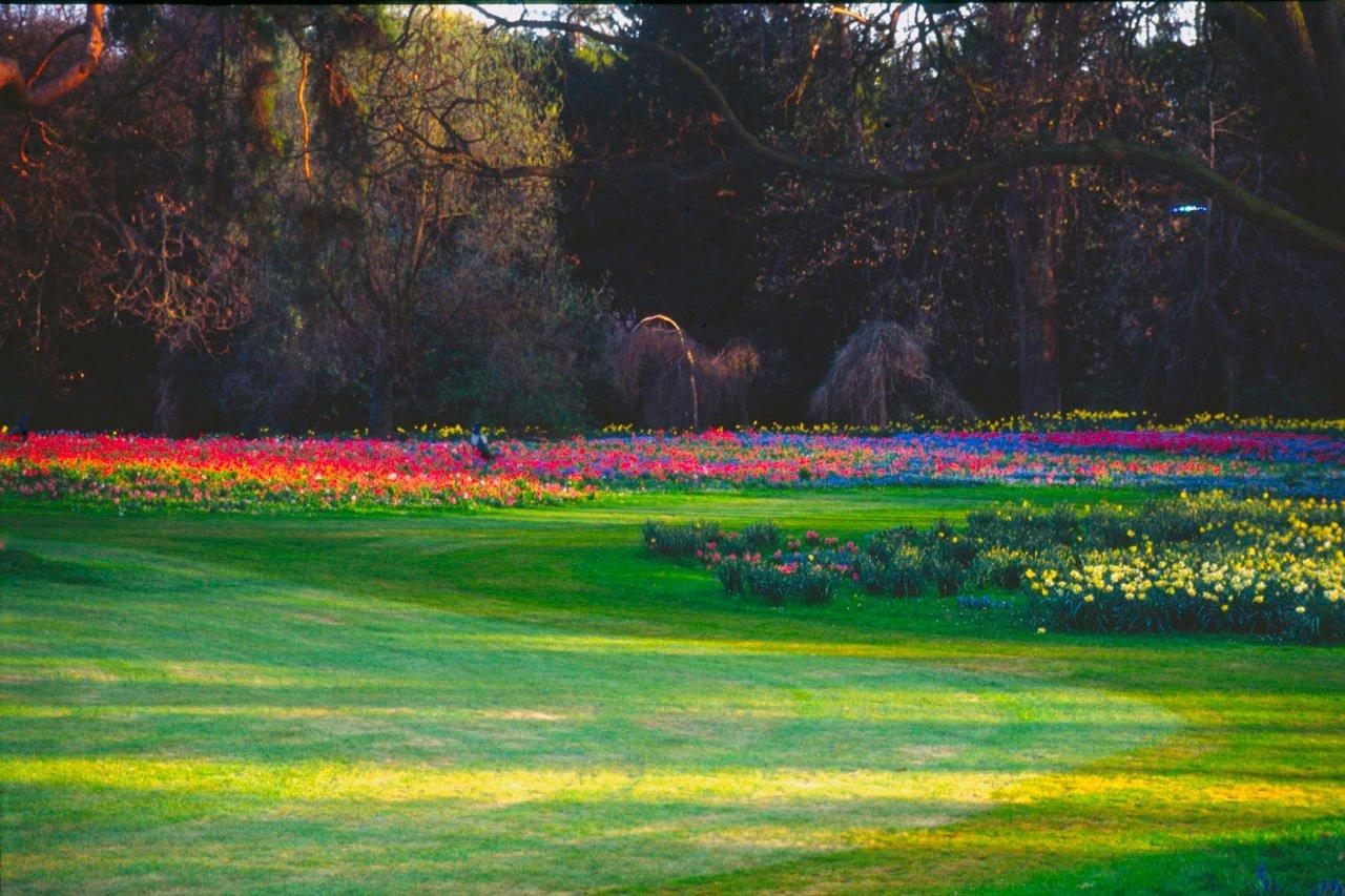 Bois De Boulogne 16e Visite Guid E Des Parcs Jardins